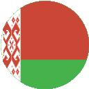 200749 - belarus circle flag.png