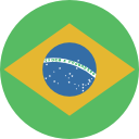272428 - brazil circle flag.png