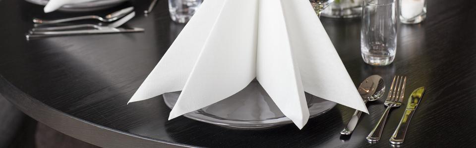 White Napkin Original.jpg